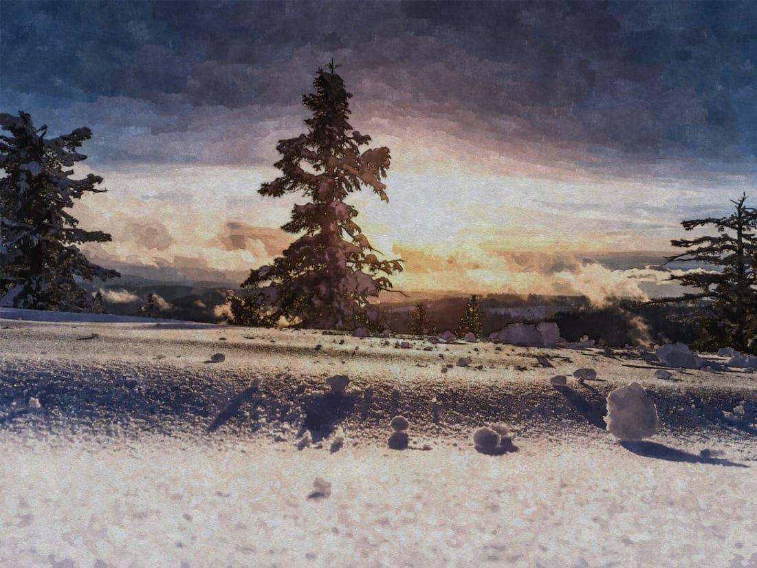 Headerbild Gespür für Schnee