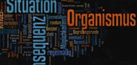 SORKC-Schema: Systematische Verhaltensanalyse – auch für ErgotherapeutInnen hilfreich